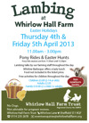 Flyer thumbnail for Lambing At Whirlow Hall Farm