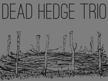 Dead Hedge Trio picture