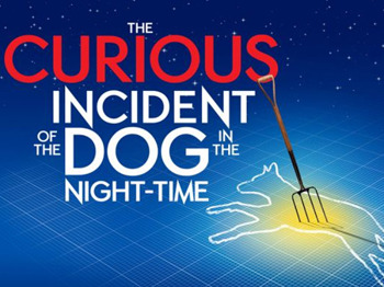 The Curious Incident Of The Dog In The Night-Time picture