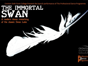 The Immortal Swan picture