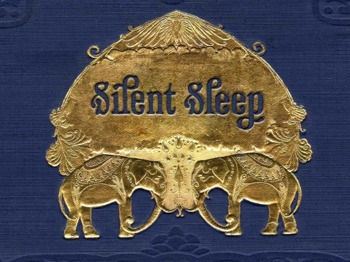 Silent Sleep artist photo