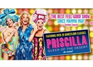 Primo Weekender : Priscilla Queen Of The Desert - The Musical (Touring), Whitney - Queen Of The Night artist photo