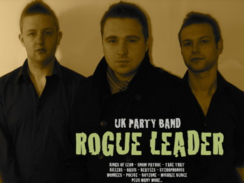 Rogue Leader picture