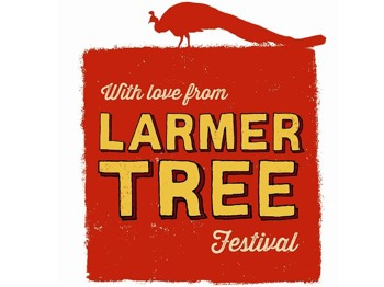 Larmer Tree Festival picture