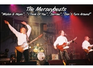 The Merseybeats artist photo