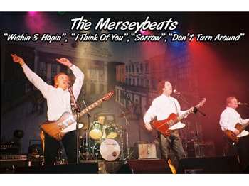 The Merseybeats picture