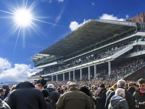Cheltenham Racecourse artist photo