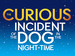 The Curious Incident Of The Dog In The Night-Time event picture