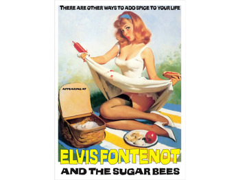Elvis Fontenot & The Sugar Bees picture