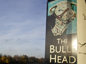 The Bull's Head artist photo
