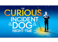 The Curious Incident Of The Dog In The Night-Time (Touring) artist photo