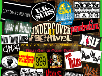 The Undercover Festival 2014 picture