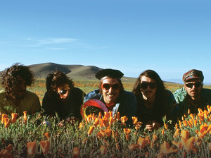 The Growlers artist photo