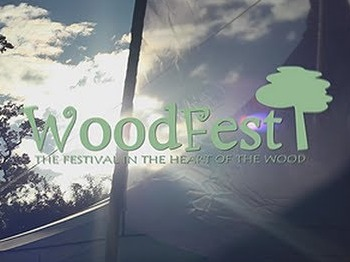 WoodFest 2014 picture