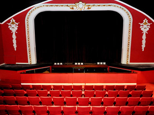 Carnegie Theatre artist photo