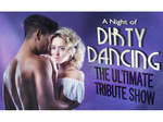 A Night of Dirty Dancing (Touring) artist photo