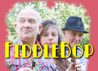 FiddleBop! artist photo