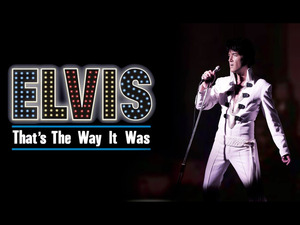 Elvis: That's The Way It Was artist photo
