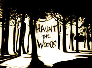 Haunt The Woods artist photo