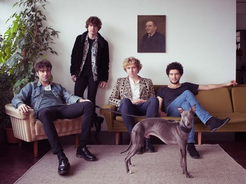 The Kooks picture