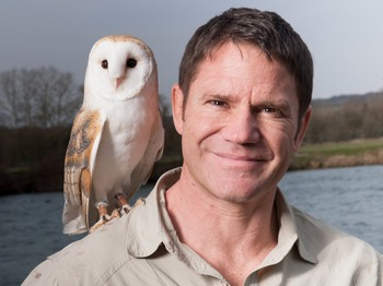 A Wild Life - An Audience With: Steve Backshall picture