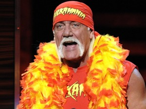 Hulk Hogan artist photo