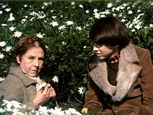 Film promo picture: Harold And Maude