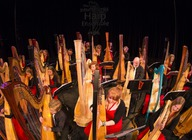 National Youth Harp Orchestra artist photo