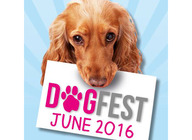 DogFest 2016 artist photo