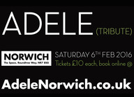 Adele Tribute Norwich artist photo