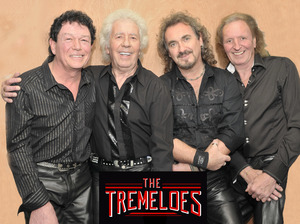 The Tremeloes artist photo