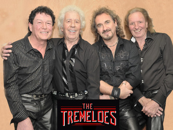 The Tremeloes picture