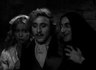 Young Frankenstein artist photo