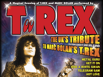 A Magical Evening Of T-rex / David Bowie: TooREX + Aladdinsane picture