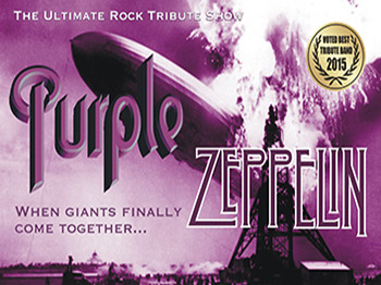 Purple Zeppelin artist photo