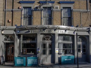 The Water Rats artist photo