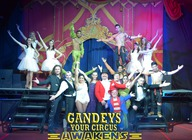 Gandey's Thrill Circus - Merry Hill: Gandeys Circus artist photo