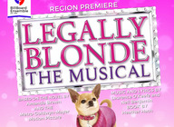 Legally Blonde The Musical: Billboard Ensemble  artist photo
