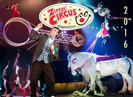 Zippos Christmas Circus : Zippos Circus artist photo