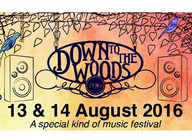 Down To The Woods artist photo