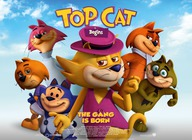 Top Cat Begins artist photo