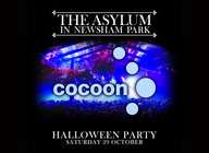 Cocoon Halloween Party artist photo