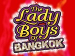 The Lady Boys of Bangkok artist photo
