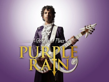 The Ultimate Prince Weekender Purple Party Night : Purple Rain picture