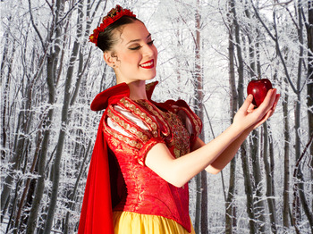 The Nutcracker: Vienna Festival Ballet picture