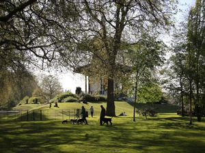 Battersea Park artist photo
