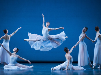 Swan Lake: The Royal Ballet picture