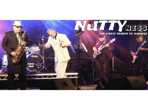 NUTTYness artist photo