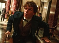 Fantastic Beasts and Where To Find Them artist photo