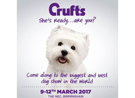 Crufts 2017 artist photo